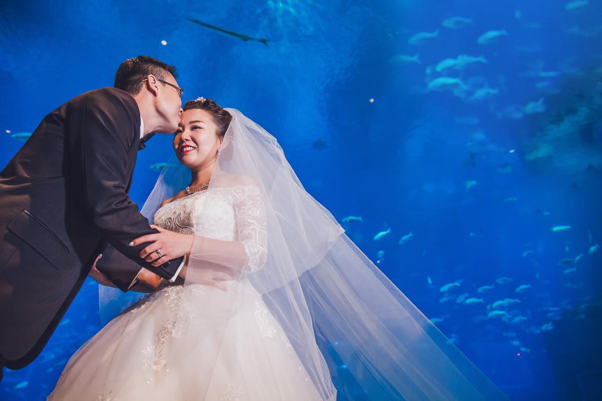 S.E.A Aquarium; wedding; Singapore; Resorts World Sentosa