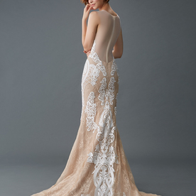 Sil gown1 champagne ff ill lace b