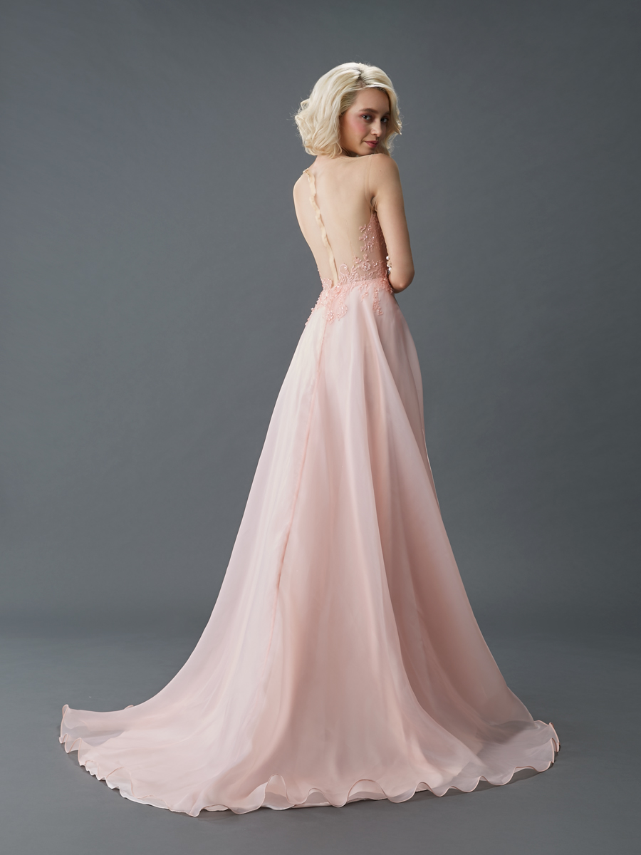 Am gown5 pink aline ill tulle b